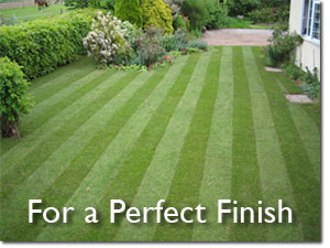 Perfect Finish for your Lawn